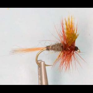Picture of Dark Cahill Fly